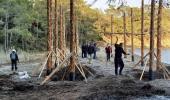 Çevrecilerin dikkati, dünyaca ünlü koyda yapılan kaçak inşaatı ortaya çıkardı